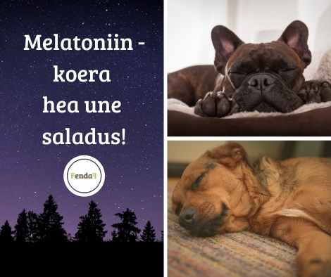 melatoniin